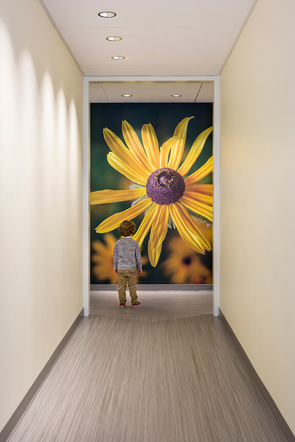 Hallway in children's pain clinic with large photo mural of flower on wall